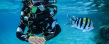 Mares HORIZON SCR Rebreather  Decompression